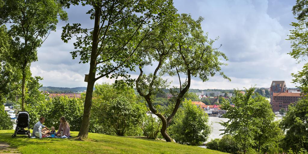 Frjensparken i Eriksberg, sommaren 2012.